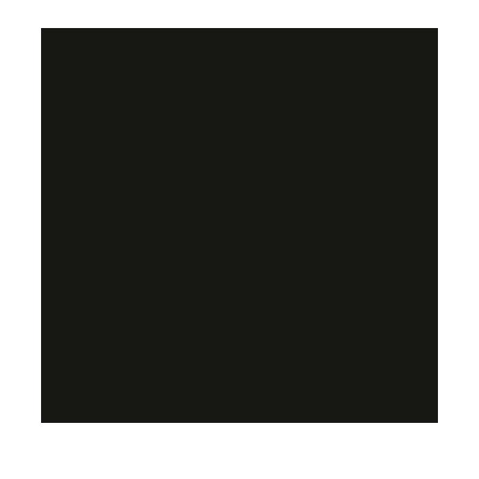OII Europe logo